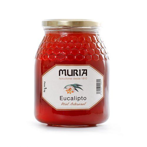 Miel de Eucalipto 1 kg